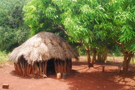 Una capanna di legno for Costruire una semplice capanna di legno